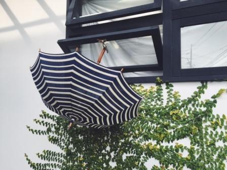 Umbrella_reef_b