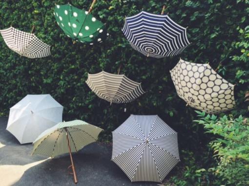 Umbrella_reef1