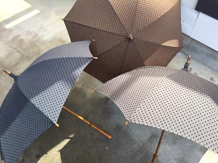 Umbrellareef1