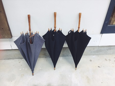 Umbrellareef4