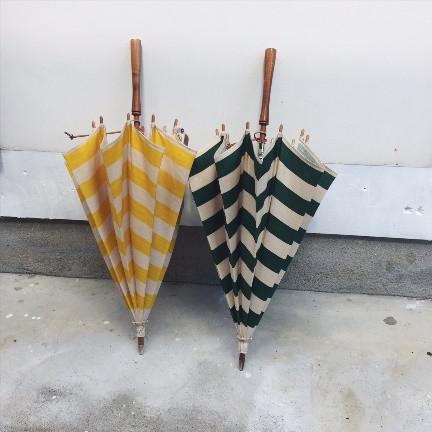 Umbrellareef5