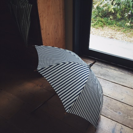 Umbrellareef6